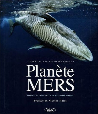 Planete mers